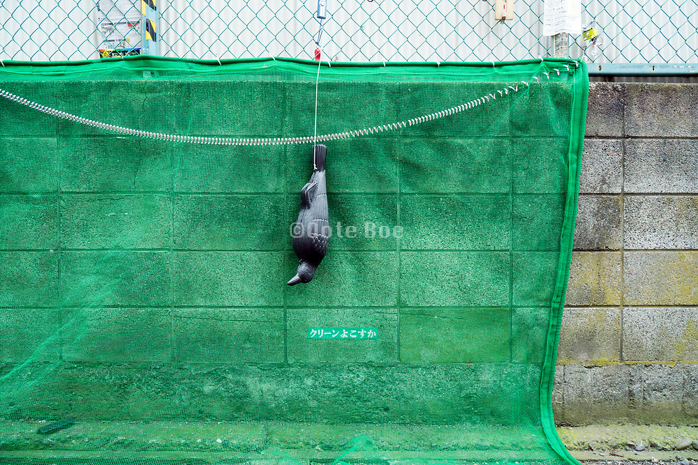 street side trash cover net with plastic crow scaring dolls Japan Yokosuka