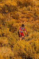 A mountain biker riding on a trail, Albuquerque, New Mexico USA