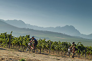 Day 1 of the Fairtree Simonsberg Contour MTB stage race. Image by Greg Beadle