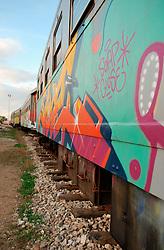 Le Ferrovie del Sud Est nascono in Puglia, nell'ottobre del 1931. A questà nuova società veniva dato in concessione l'insieme delle reti ferroviarie precedentemente gestite da diversi organismi (Società per le Ferrovie Salentine, Società per le Ferrovie Sussidiate, Ferrovie dello Stato)..Le aree pugliesi attraversate dalla società ferroviaria sono l'area barese, la fascia Taranto-Brindisi e l'area leccese-salentina, collegando fra loro i capoluoghi di Bari, Taranto e Lecce, nonché oltre 130 comuni delle province meridionali..Il reportage fotografico sulle Ferrovie Sud Est intende testimoniare l'evoluzione tecnologica che, durante gli anni, ha modificato e migliorato il servizio ferroviario e la convivenza del progresso con tracce del passato, attraverso un viaggio tra le stazioni e i depositi..Facciata laterale di un treno nel parcheggio deposito di Mungivacca.