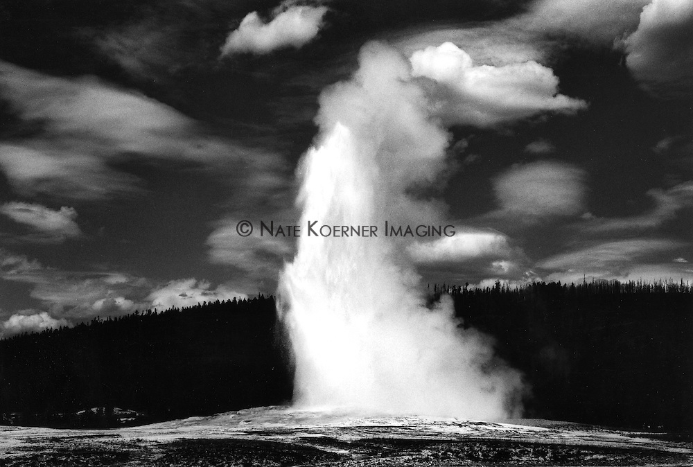 Black and white image of Old Fathful Geyser in Yellowstone National Park