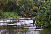 A stand up paddle boarder on the Hanalei River, Hanalei, Kauai, Hawaii.
