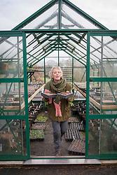 Carol carrying tray of seedlings