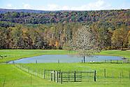 Doyle Farm