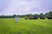 Maggie Keith and her mother Janey are the stewards of Fox Hollow Farm, a 4th generational family farm in Kentucky.