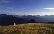 Hurricane Ridge, Olympic National Park, Washington<br />