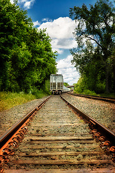Follow up the tracks as they lead through the spring green foliage
