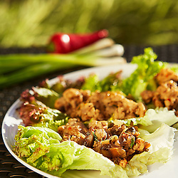 Chicken Lettuce Wraps- Client: Atkins Nutritionals