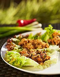 Chicken Lettuce Wraps- Client: Atkins Nutritionals