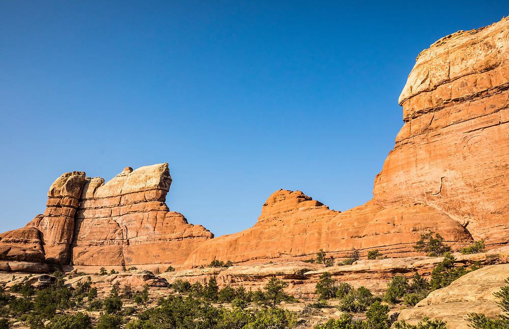 Sandstone walls or fins in The Needles, Canyonlands National Park, Utah, USA.