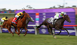 November 3, 2017 - San Diego, CA, USA - Chad Brown aboard Rushing Fall (11) won the Breeders' Cup Juvenile Fillies Turf race at the Del Mar Thoroughbred Club on Friday, Nov. 3, 2017.  (Photo by K.C. Alfred/The San Diego Union-Tribune (Credit Image: © K.C. Alfred/San Diego Union-Tribune via ZUMA Wire)