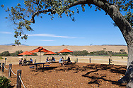 Foxen Vineyard in Santa Maria, California. The new, solar powered tasting room.