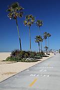 Pedestrian Boardwalk Newport Beach
