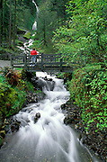 Wahkeenah Falls and footbridge, Columbia River Gorge National Scenic Area, Oregon USA