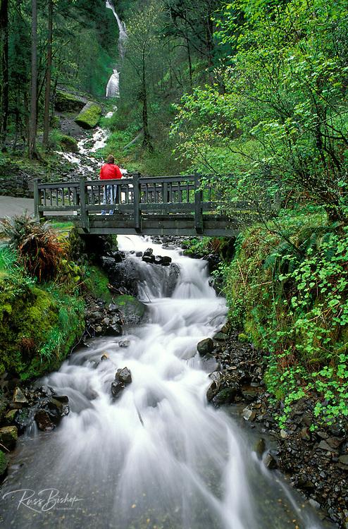 Wahkeenah Falls and footbridge, Columbia River Gorge National Scenic Area, Oregon USA