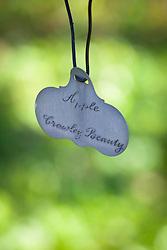 Apple 'Crawley Beauty' metal label