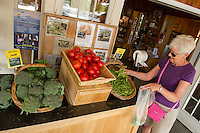 Nancy Wadhams gets her pick of broccoli, tomatoes and sugar snap peas from Moulton Farm in Meredith Friday morning.  (Karen Bobotas/for the Laconia Daily Sun)