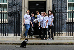 © Licensed to London News Pictures. 30/05/2019. London, UK. A 12,000 signature petition is delivered to Downing Street as Palmerston, the Foreign Office cat sitting on the street.<br /> Hundreds of children, their families and supporters protests about a crisis in education for young people with special educational needs. Photo credit: Dinendra Haria/LNP