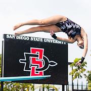 01/11/2019 - Swim & Dive V Fresno St