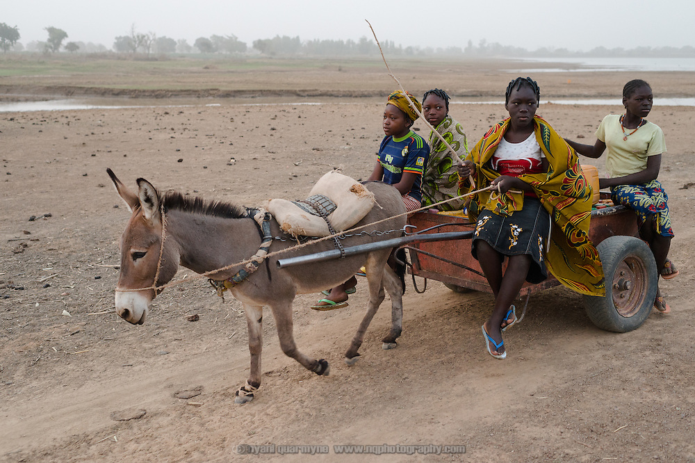 Sisters Rihanata (15), Alimata (18), Nafisatou (17) and Amsetou Ouedraogo (12) making their way home after collecting untreated water from a dam in Koala, Burkina Faso on 1 March 2014. The girls typically make three round trips every day, filling 17 jerry cans each time, with each trip taking over an hour.