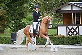 PSJ-Dressur Cup - Pony