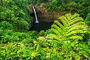 Rainbow Falls, Wailuku River State Park, Hilo, The Big Island, Hawaii USA