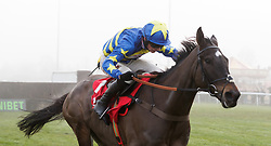 Dynamite dollars ridden by Harry Cobden on the way to winning The 32Red.com Wayward Lad Novices' Chase during day two of 32Red Winter Festival at Kempton Park Racecourse.