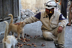 24.06.2015, Aleppo, SYR, Bürgerkrieg in Syrien, im Bild ein Feuerwehrmann streichelt und füttert Katzen in einer Feuerpause // Mohammed Mashadi, a 40-year-old Syrian civil defense member, feeds cats in a street in Bab al-Nairab district. Some 600 Syrians known as ''White Helmets'' or Syrian Civil Defense units, are organized volunteers who act as rescue members, work with no regard for sect or creed in areas like Aleppo and Idlib provinces in the country's northwest. In the last six months, they have recorded more than 2,500 lives saved. They run out after barrel bombs have dropped and dig through the rubble, often with their bare hands, in search of life, Syria on 2015/06/24. EXPA Pictures © 2015, PhotoCredit: EXPA/ APAimages/ Ameer al-Halbi<br /> <br /> *****ATTENTION - for AUT, GER, SUI, ITA, POL, CRO, SRB only*****