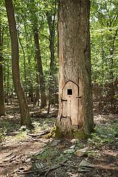 3110 Mountain rd Gainesville,Virginia Hobbit tree with door