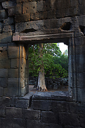 Old tree framed in window of Banteay Kdei