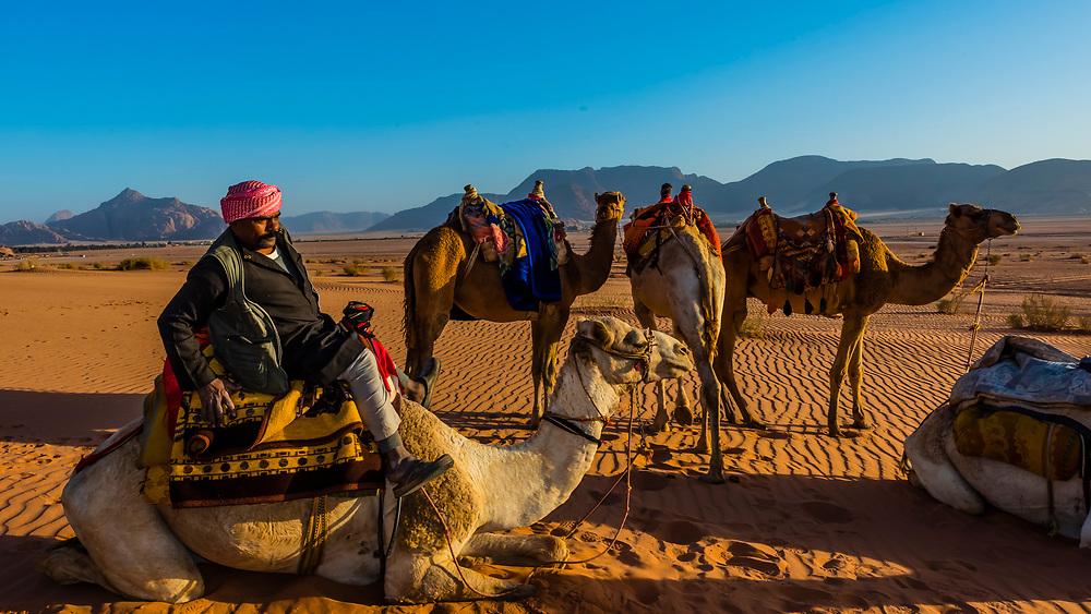 Bedouin man riding a camel in the Arabian Desert, Wadi Rum, Jordan.