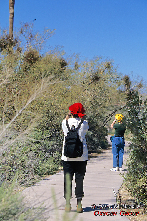 Tourists In Joshua Tree Looking At Birds