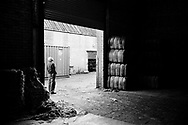 A worker awaiting a delivery at Tay Spinners mill in Dundee, Scotland. This factory was the last jute spinning mill in Europe when it closed for the final time in 1998. The city of Dundee had been famous throughout history for the three 'Js' - jute, jam and journalism.
