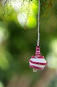 A radish carved into a Christmas ornament for the Noche de Rabanos festival, Oaxaca, Mexico.