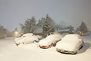 Cars buried in snow in Palo Park after a blizzard in Boulder, Colorado.