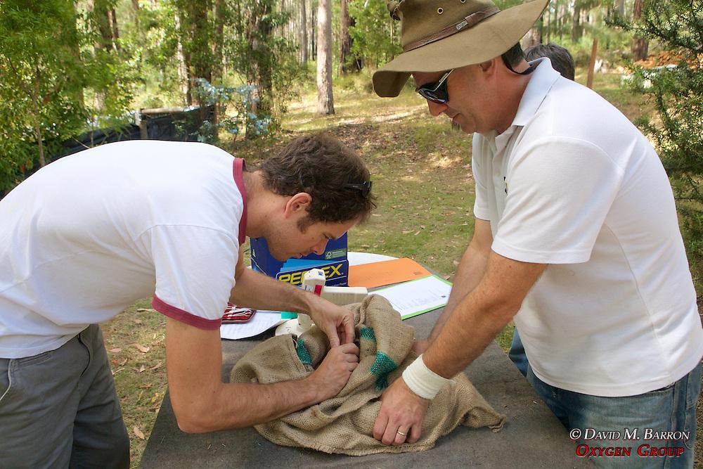 Sam & David Working With Possum
