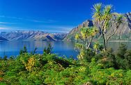 Lake Hawea, Otago Region, South Island, New Zealand