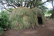Africa, Tanzania, Lake Eyasi, Straw huts of the Hadza tribe a small tribe of hunter gatherers AKA Hadzabe Tribe April 2006