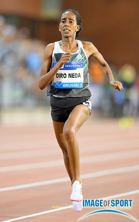 Sep 9, 2016; Brussels, Belgium; Senbere Teferi (ETH) places third in the women's 5,000m in 14:29.82 in the 41st Memorial Van Damme at King Baudouin Stadium. Photo by Jiro Mochiuzki