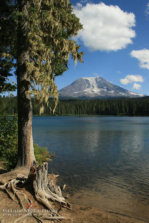 Takhlakh Lake, Washington, with Mt. Adams in the background.