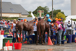 Horse care<br /> Endurance - Alltech FEI World Equestrian Games™ 2014 - Normandy, France.<br /> © Hippo Foto Team - Jantien Van Zon