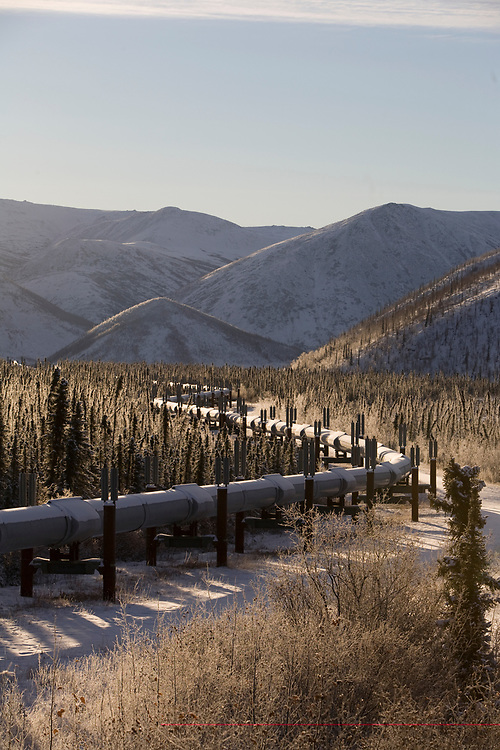 The Trans-Alaska Oil pipeline runs through hundreds of miles of wilderness between Fairbanks and the oil fields in Prudhoe Bay