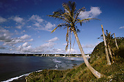 Tumon Bay, U.S. Territory of Guam, an island in the Western Pacific Ocean, the largest of the Mariana Islands. Many of the palm trees were damaged by a recent typhoon.