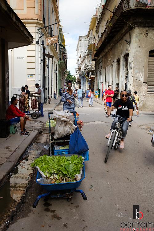 Cuba, December 2018 (Photo by Melinda and Kevin Bartram)