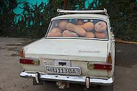 Ouzbekistan, region de Fergana, Marguilan, bazar, marché alimentaire, vendeurs de potiron // Uzbekistan, Fergana region, Marguilan, bazaar, food market, pumpkin sellers