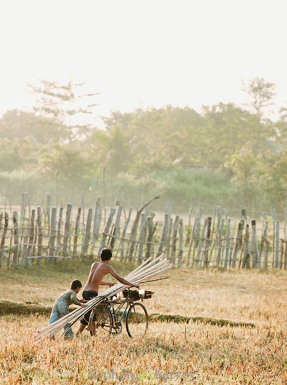 Two young me push a bicycle loaded with wooden poles across a field in rural Cambodia
