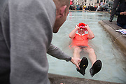 Stag party humiliation pranks as the groom is dressed up as a woman in an orange dress and wig then pushed into the fountains in Trafalgar Square in London, England, United Kingdom. There is a strong tradition at the British Stag Do, to play tricks on the stag at least once. In this case, he had no idea where he was headed, and so blindfolded was perched on the waters edge and thrown in. The stag seemed not to mind but was also, somewhat the worse for wear.