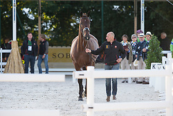 Jeroen Devroe, (BEL), Eres DL - Horse Inspection Dressage - Alltech FEI World Equestrian Games™ 2014 - Normandy, France.<br /> © Hippo Foto Team - Leanjo de Koster<br /> 25/06/14