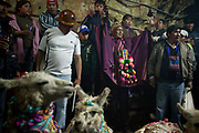 Boilivian miners from Oruro celebrating the start of Carnival with the ch'alla ceremony which involves blessing llamas which are seen as lucky in Bolivia, with beer, cica, tobacco and ribbons, then sacrificing the llamas to El Tio - the God of the underworld, who is seen to have an insatiable appetite for destruction so therefore needs to be appeased with an offering of blood for prosperity for the coming year