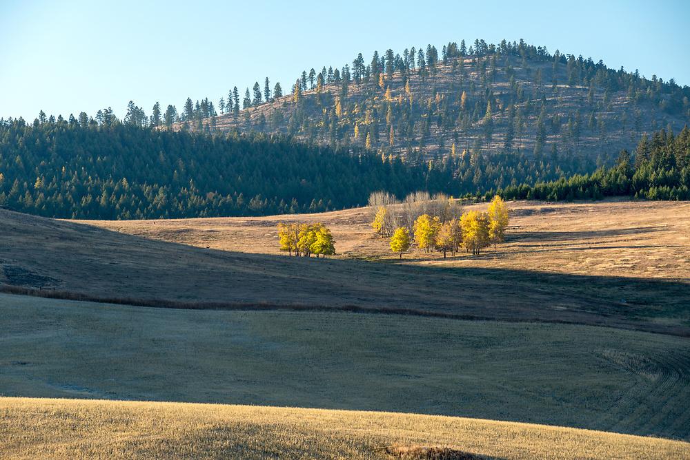 Okanogan Highlands, Washington.